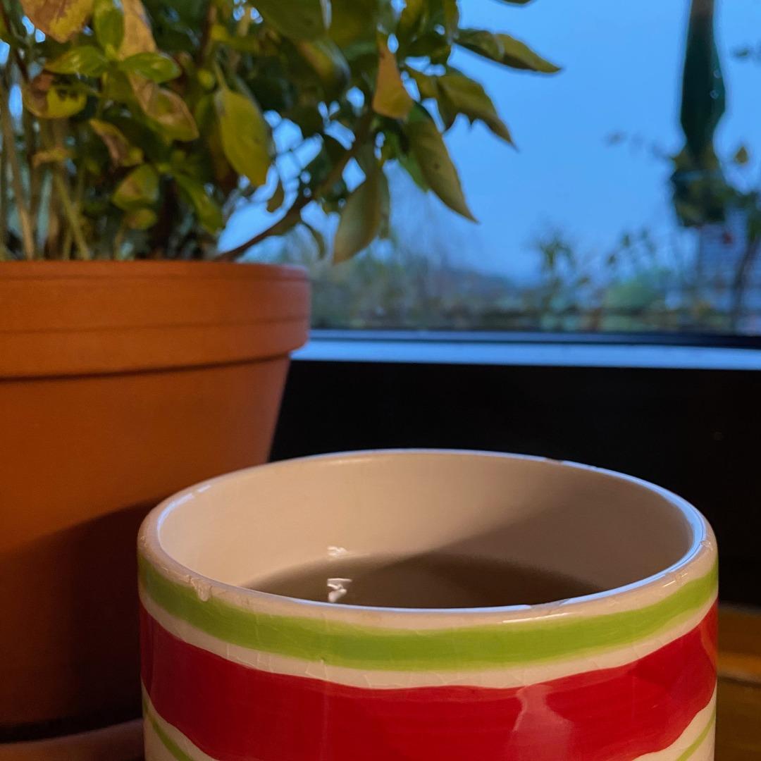 Tasse vor Fenster