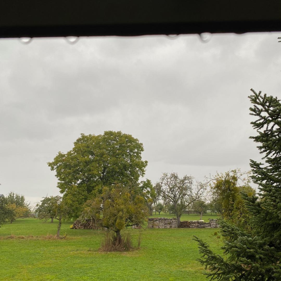 regen mit blick in den garten